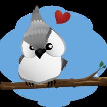 Birdie Love